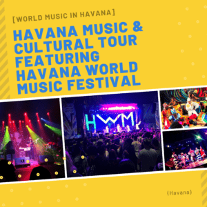 havana world music festival flyer artist